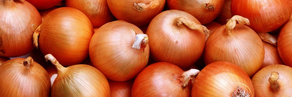 Onion-Wallpapers-14-1500x500